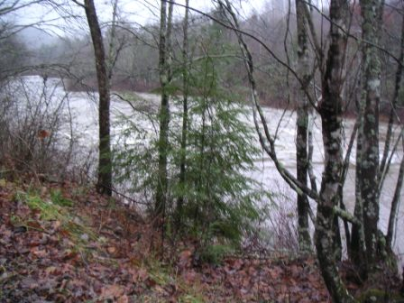 River Front Caney Fork For Sale 3/4 mile