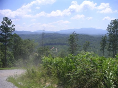 Bradley County  Tennessee - Click To View Property - Tennessee Hunting Land For Lease