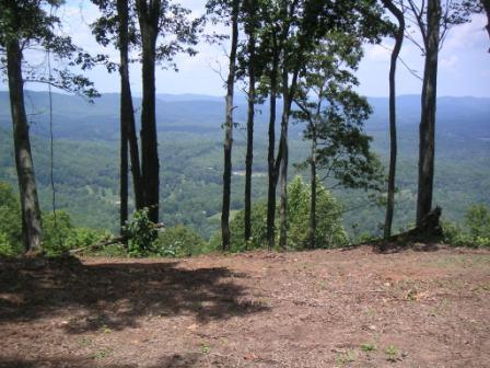 Polk County Tennessee Hunting Land For Lease in Turtletown TN 109 Acre Tract
